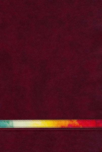 NIV Rainbow Study Bible - Maroon Thumb-Indexed