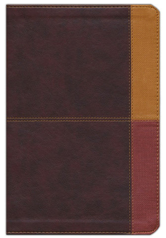 NIV Holman Rainbow Study Bible-Cocoa/Terra Cotta/Ochre Leathertouch Indexed