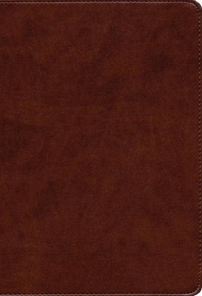 KJV Large Print Ultrathin Reference Bible British Tan Leathertouch