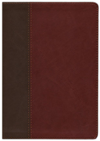 NIV Life Application Study Bible (Third Edition)-Tan/Brown Leathersoft Indexed Third Edition