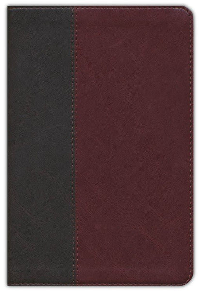 NLT Life Application Study Bible/Personal Size (Third Edition)-Brown/Tan LeatherLike