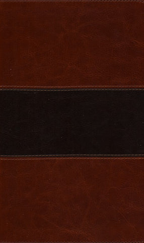 KJV Study Bible - DiCarta Two Tone Brown