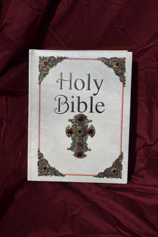 Catholic Family Bible-St Joseph NAB Large Print Ivory with Brass Stampings and Red Stones