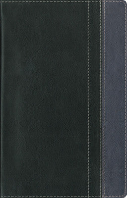 Mens Devotional Bible - Charcoal/Steel Blue- NIV