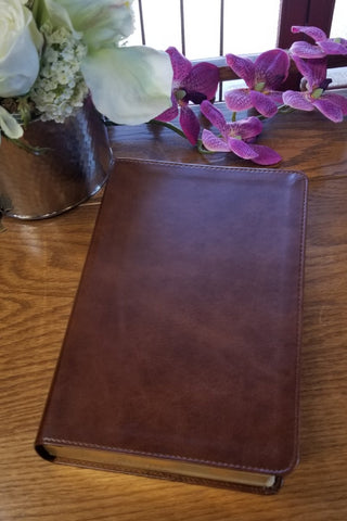 ESV Story of Redemption Study Bible -Brown - Limited Quantities