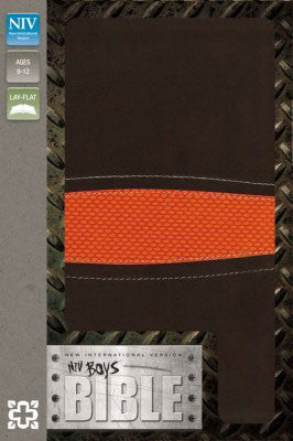 NIV Boys Bible - Brown