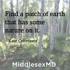 Find a patch of earth that has some nature on it.