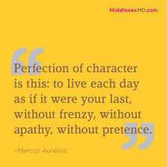 Perfection of character is this: to live each day as if it were your last, without frenzy, without apathy, without pretense.