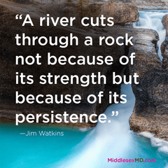 A river cuts through a rock not because of its strength but because of its persistence.