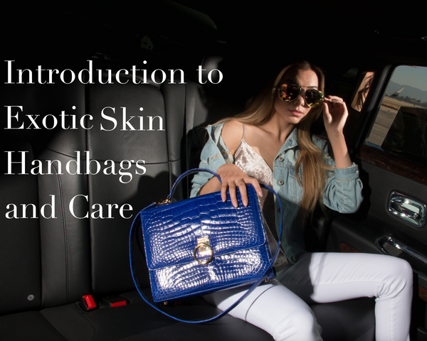 Introduction to Exotic Skin Handbags and Care