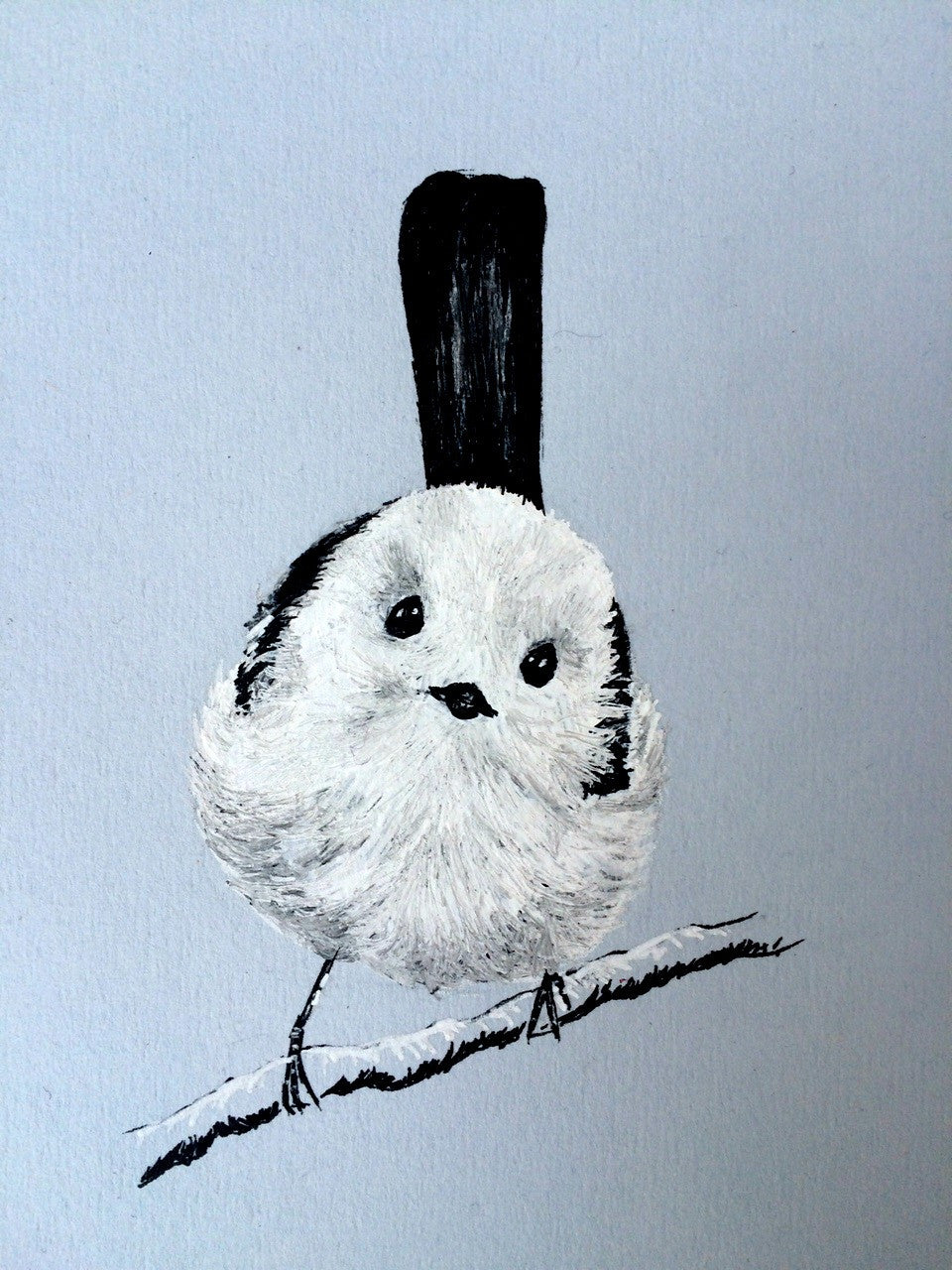 Long-tailed Tit, Ink Portrait