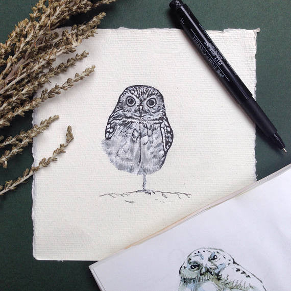 Burrowing Owl, Ink Drawing