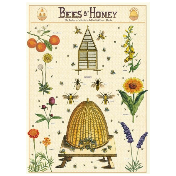 Cavallini Bees & Honey 2 Poster