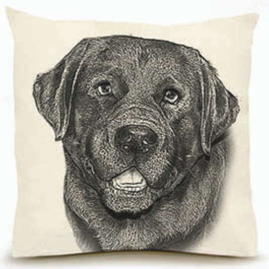 Eric & Christopher Black Lab #2 Pillow
