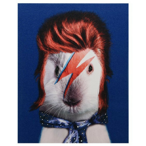 "Pets Rock Giclee Print ""Glam Rock"""