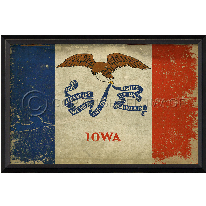 Iowa State Flag Wall Art