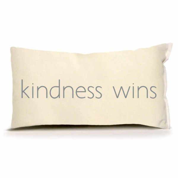 Lingowares by Eric & Christopher Kindness Wins Pillow