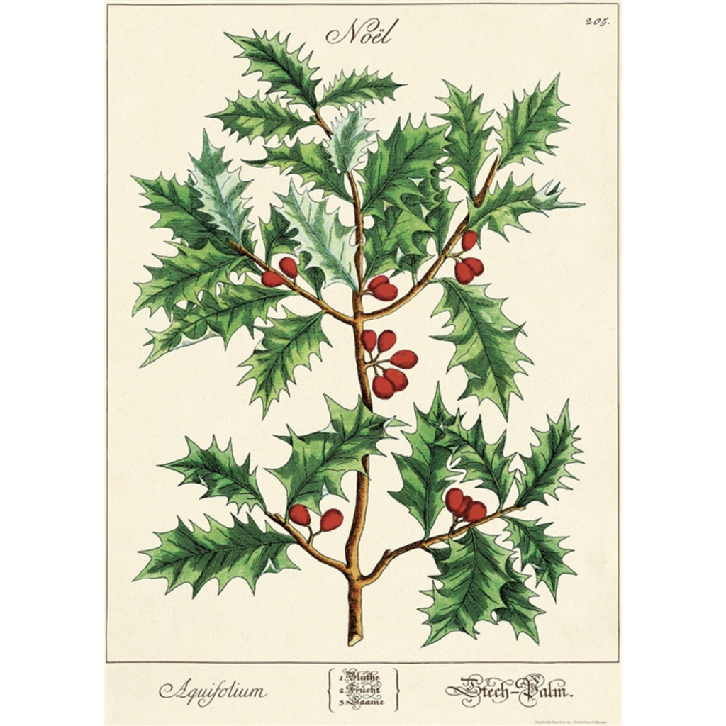 Cavallini Holly Poster