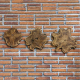 Kalani Teak Wall Art, 3-Piece Set