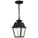 Mansfield 1-Light Outdoor Hanging Lantern