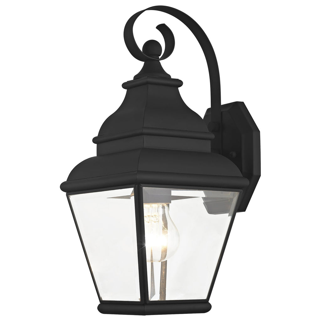 Exeter 1-Light Black Outdoor Wall Lantern
