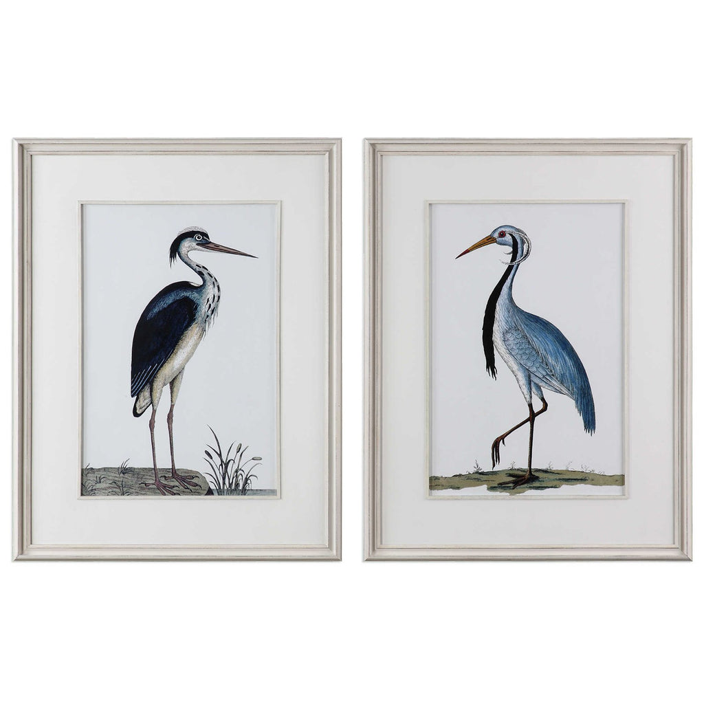 Shore Birds Framed Prints Set of 2