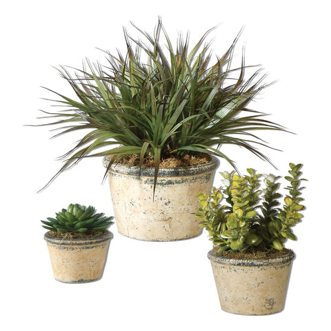 La Costa Greenery, Set of 3