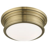 Astor 2-Light Ceiling Mount