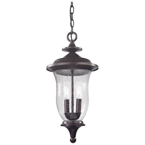 Trinity 2-Light Outdoor Pendant in Oil Rubbed Bronze