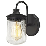 Hamel 1-Light Vanity Lamp in Oil Rubbed Bronze with Clear Seedy Glass