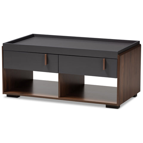 Baxton Studio Rikke Two-Tone Gray and Walnut Finished Wood 2-Drawer Coffee Table
