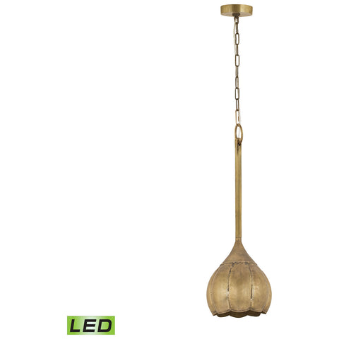 Iron Melon LED Ceiling Lamp in Gold