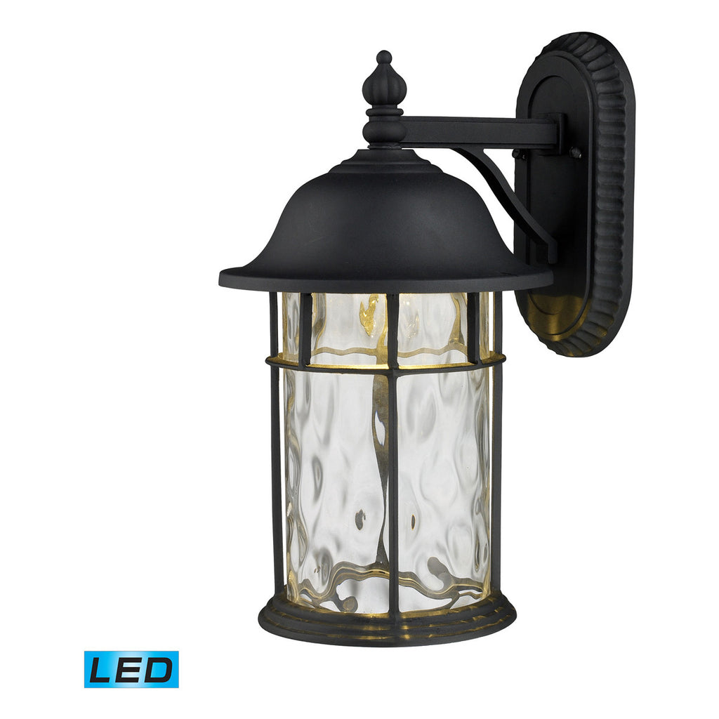 Lapuente 1-Light Outdoor Sconce in Matte Black