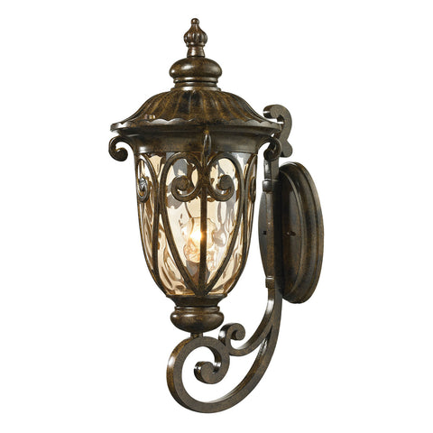 Logansport 1-Light Outdoor Wall Sconce in Hazelnut Bronze