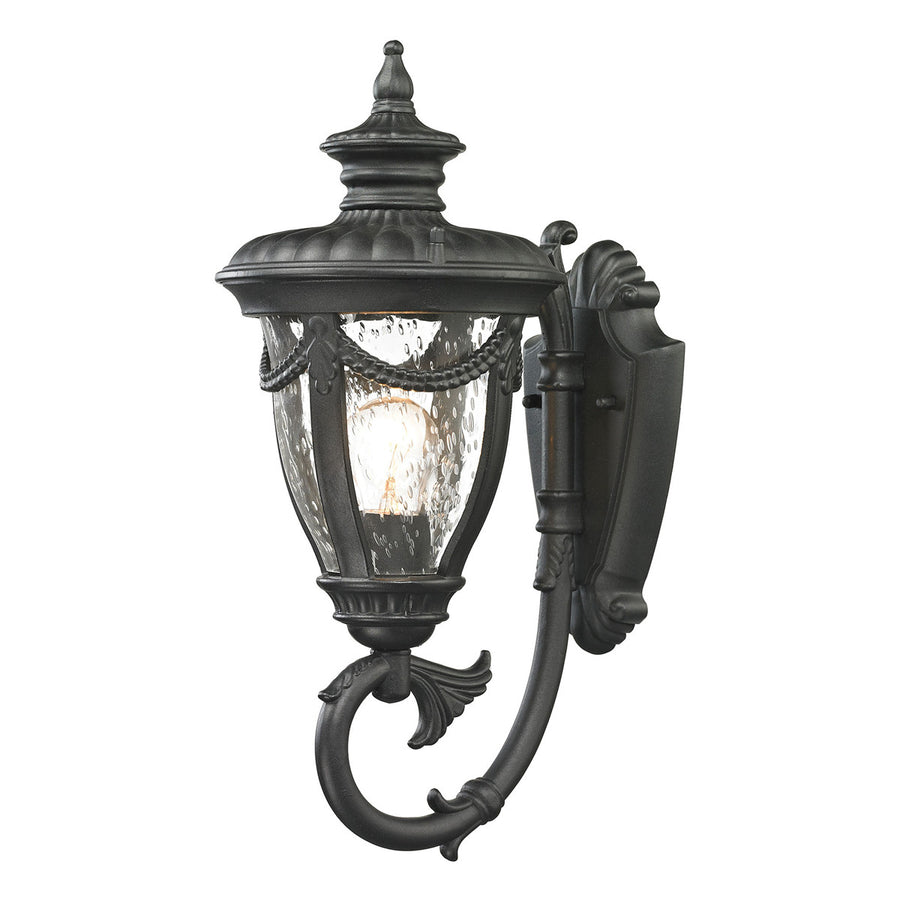 Anise 1-Light Outdoor Wall Sconce in Textured Matte Black