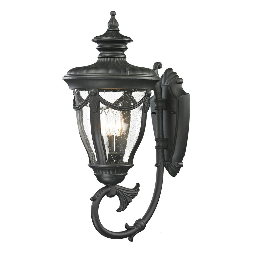 Anise 3-Light Outdoor Wall Sconce in Textured Matte Black