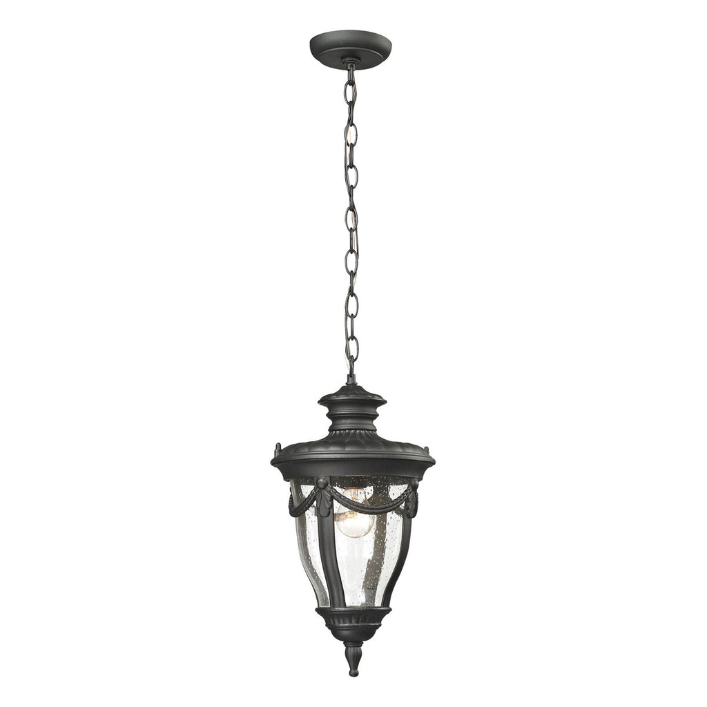 Anise 1-Light Outdoor pendant in Textured Matte Black