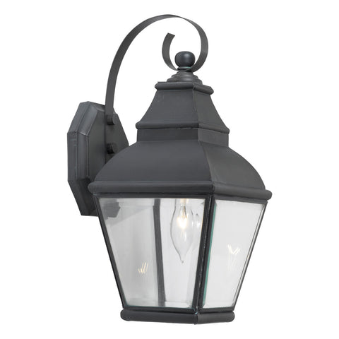 Bristol 1-Light Outdoor Wall Lantern in a Charcoal