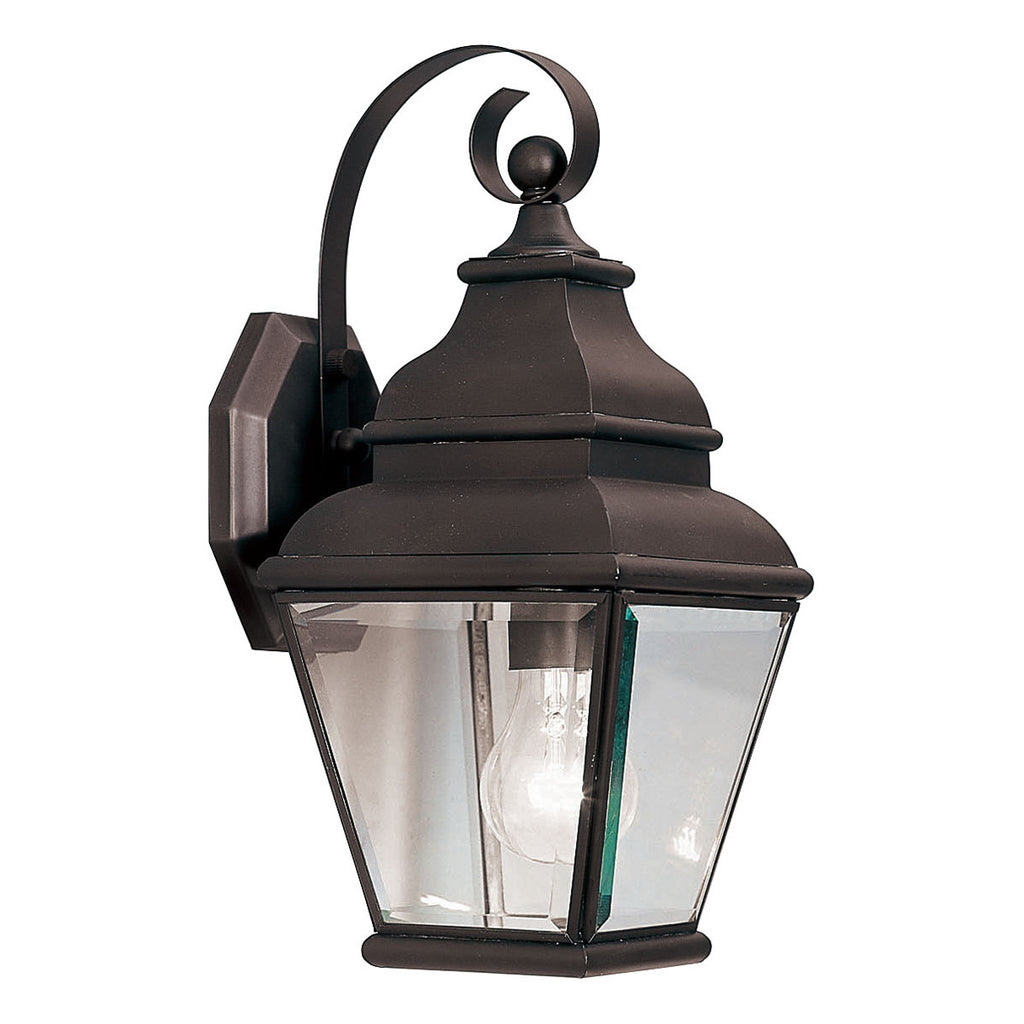 Exeter 1-Light Bronze Outdoor Wall Lantern