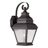 Exeter 1-Light Outdoor Wall Lantern