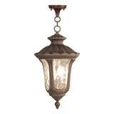Oxford 3-Light Outdoor Hanging Lantern