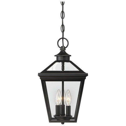 "Ellijay 9"" Steel Hanging Lantern in Black"