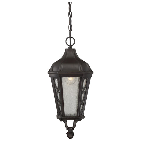 "Hamilton 9"" Hanging Lantern in English Bronze"