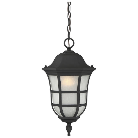 "Ashburn 10"" Hanging Lantern in Black"