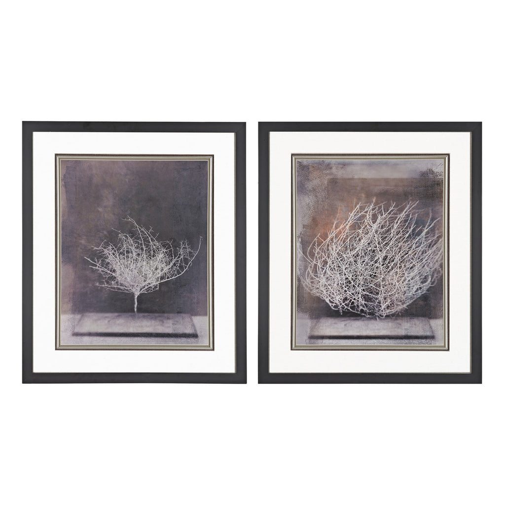 Desert Form Framed Art in Black, Set of 2