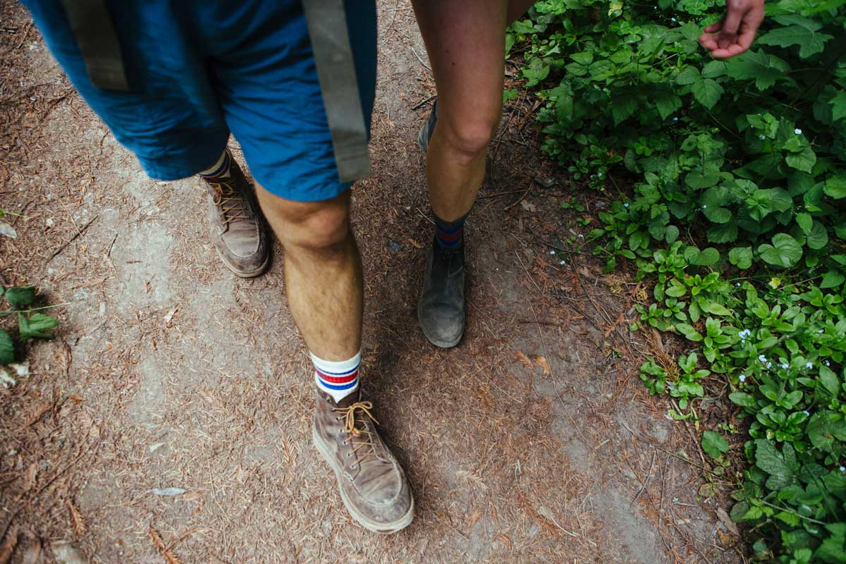 A Beginner's Guide to Hiking: Series Intro