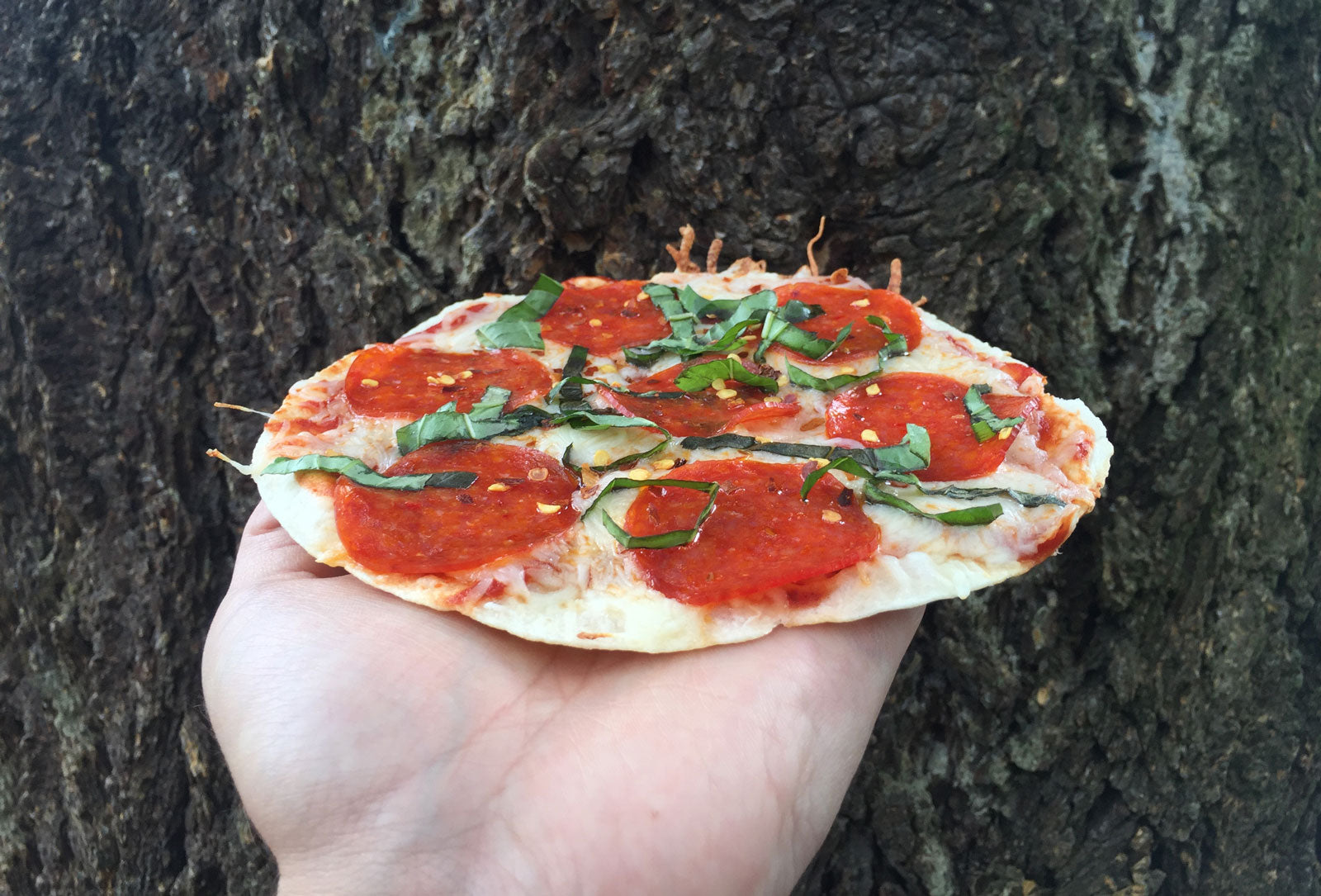 Backpacking Recipe - Tortilla Trail Pizza