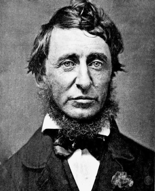 5 Inspiring Quotes from Henry David Thoreau