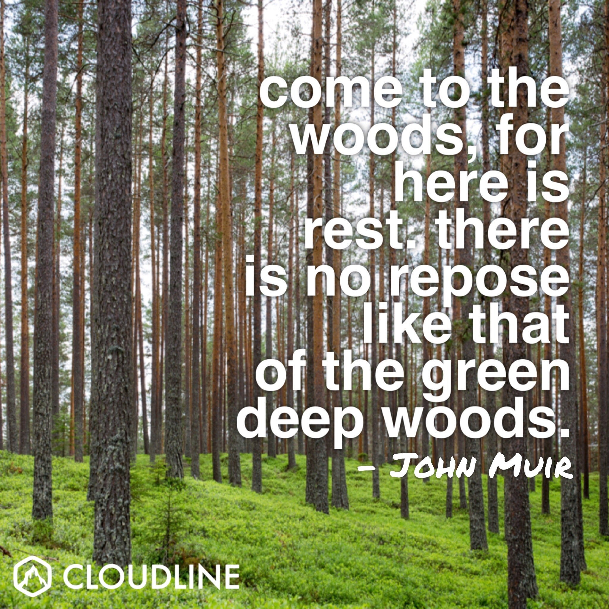 Get Inspired to Hike More with These Outdoor Quotes - John Muir