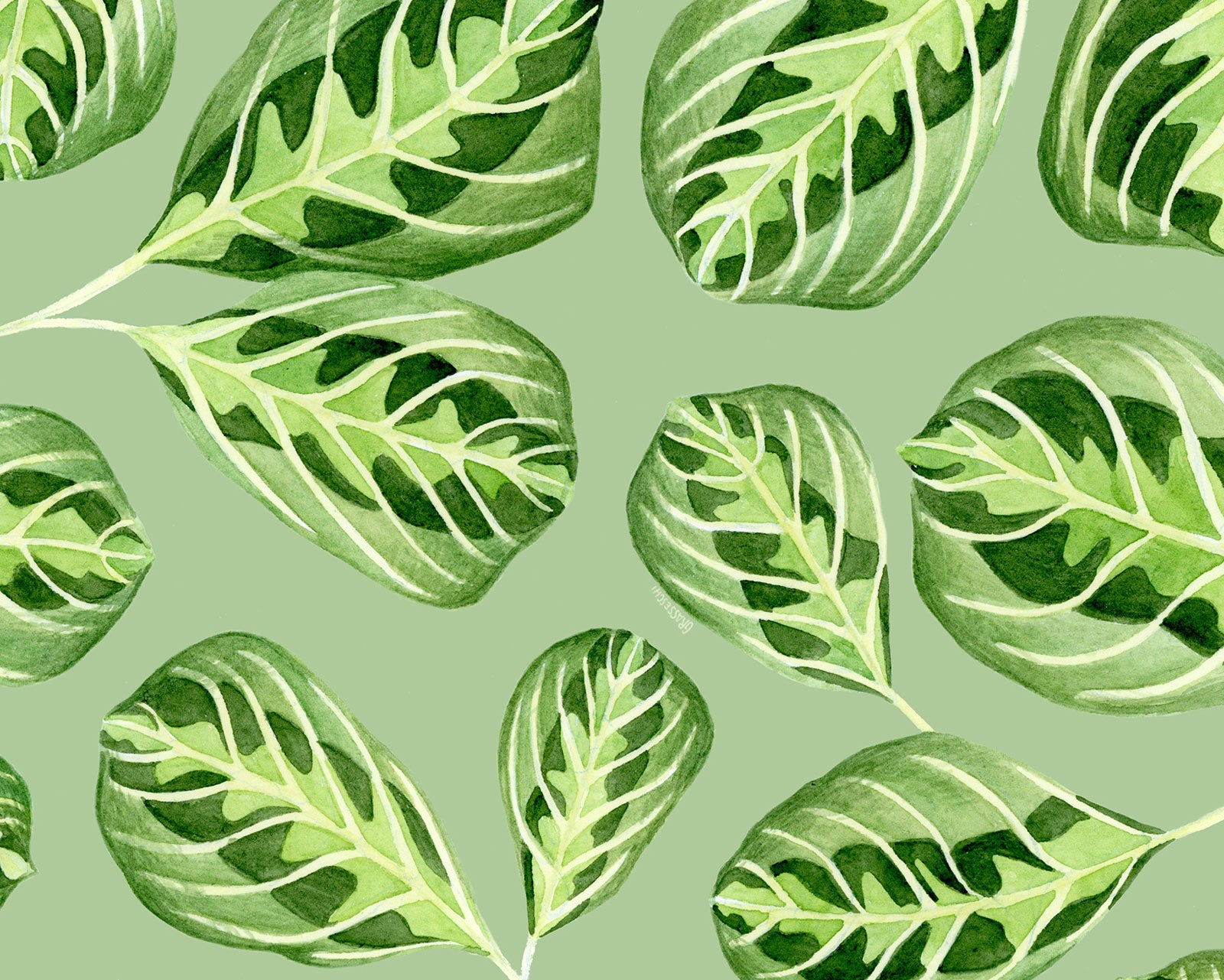 Leaves Pattern by Illustrator Teresa Grasseschi